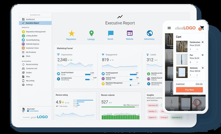 Business-app-screen-mock-executive-repor