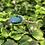 Thumbnail: Turquoise Ring