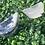 Thumbnail: Small Moon Dishes