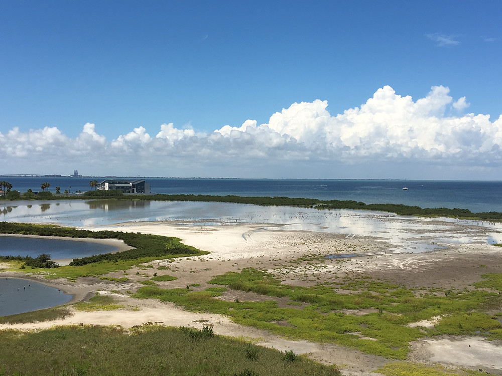 The salt flats during the Spring Tide high tide from the lookout tower.