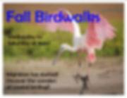 Fall birdwalks.jpg