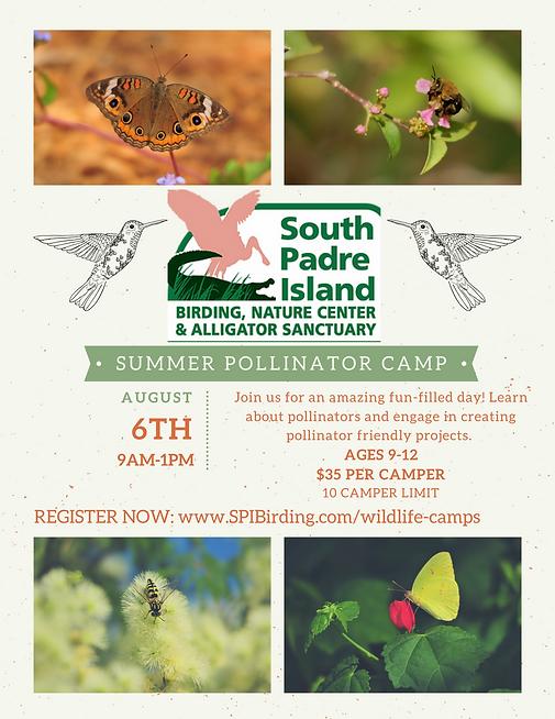 Summer Pollinator Camp Flyer.png