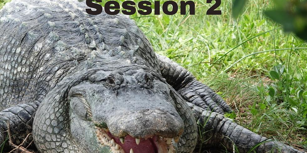 Coastal Nature Camp 2021 Session 2