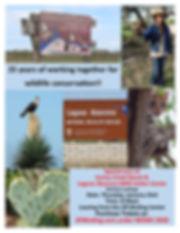 Cactus Creek flyer.jpg