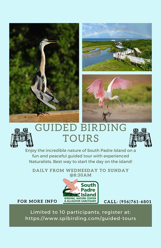 Winter SPIBNC  Birding Tours 2020 (1).pn