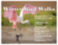 Winter 2109-2020 bird walks.jpg