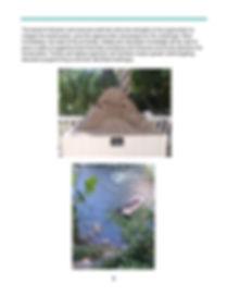 Abbreviated_SPI_Birding_Nature_Center_an