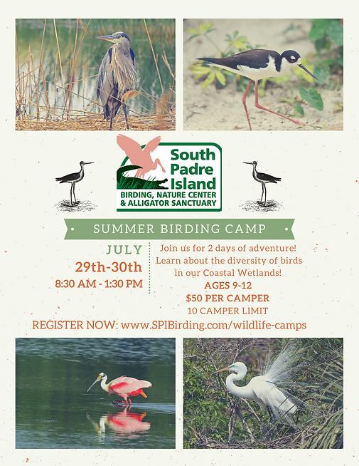 Copy of Summer Bird Camp Flyer.png