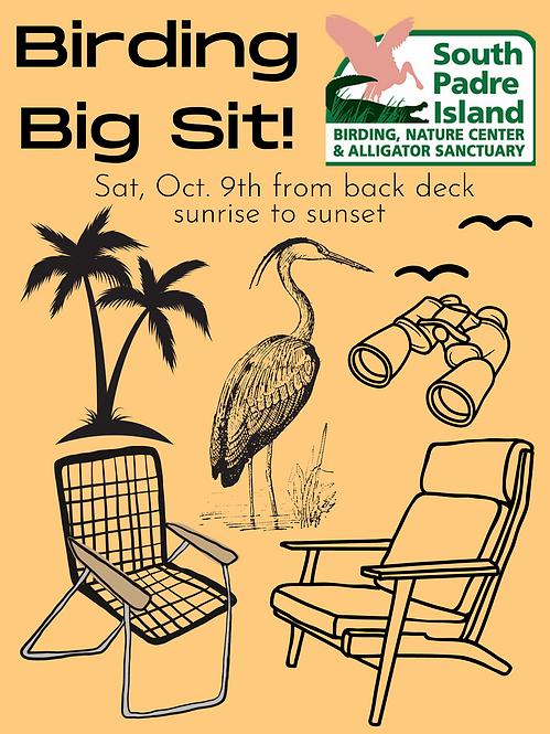 Birding Big Sit!.png
