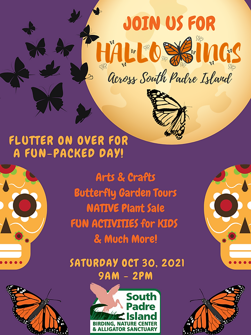 HALLOWINGS Poster (1).png
