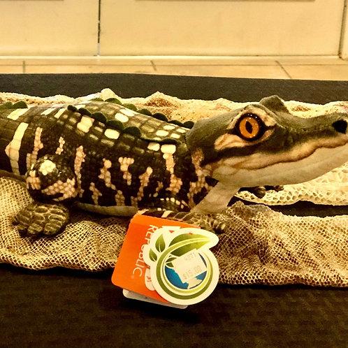 "12"" Plush American Alligator"