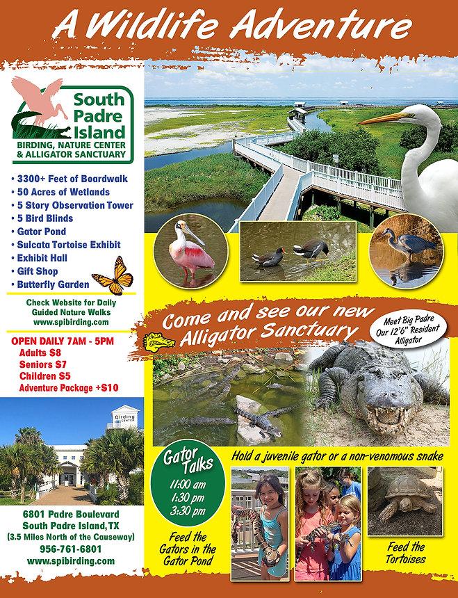 bird gator flyer 2019.jpg