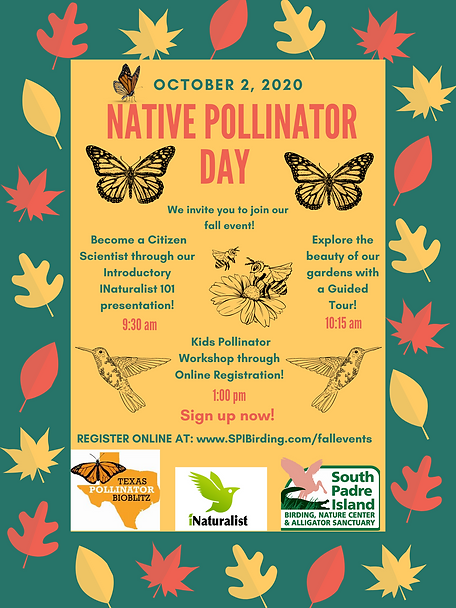 Native Pollinator Day Poster.png