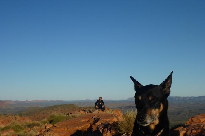 Alice Springs Teil 2 - What next?