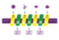Aptivolt Description Diagram.png