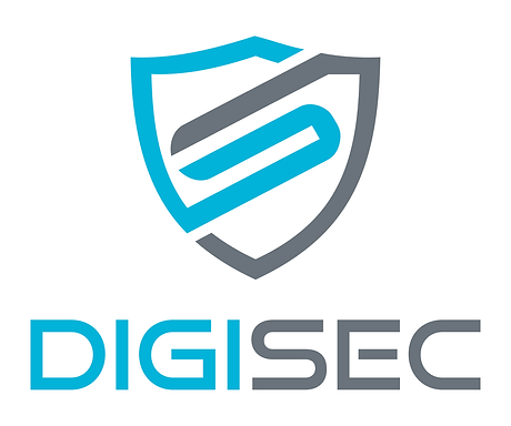 DigiSec Light.png