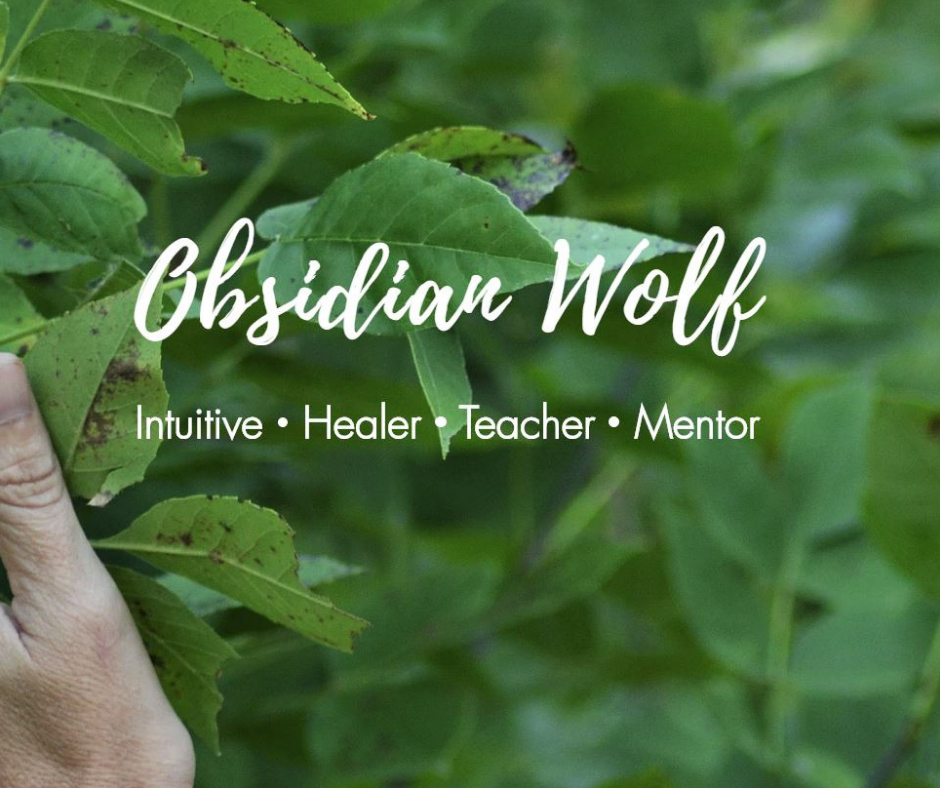Leasa McFarling, Obsidian Wolf, Spiritual Healer, South Dakota, Website Design,
