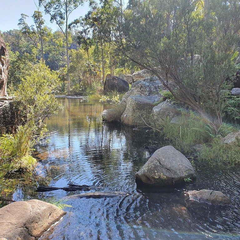 COMING SOON: Blackdown Tablelands Discovery Day Tour