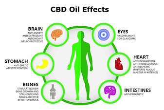 Cannabidiol-CBD-Oil-Benefits-Info-Guide-