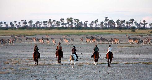 San Camp horseriding.jpg