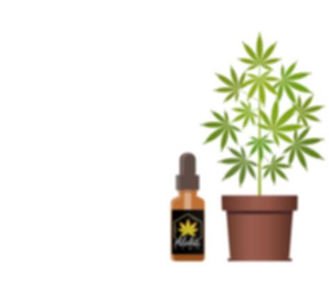 logo plant edit.jpg