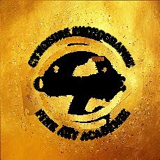 certif-cynosure-black.png