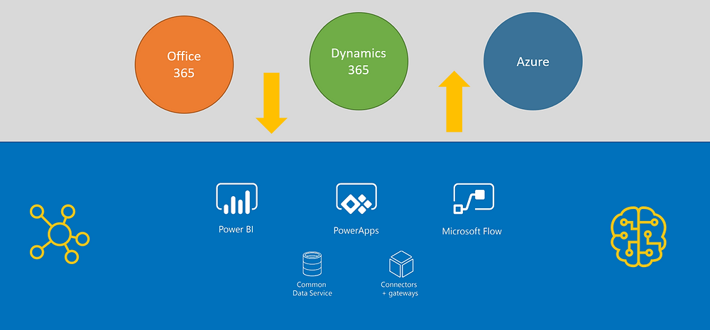 Overview of the Microsoft Power Platforms