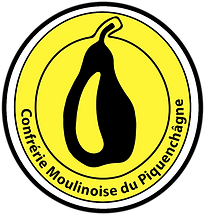 logo VECTORISE avril 2021 JAUNE.png