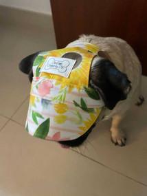 Sunflowers Dog Cap