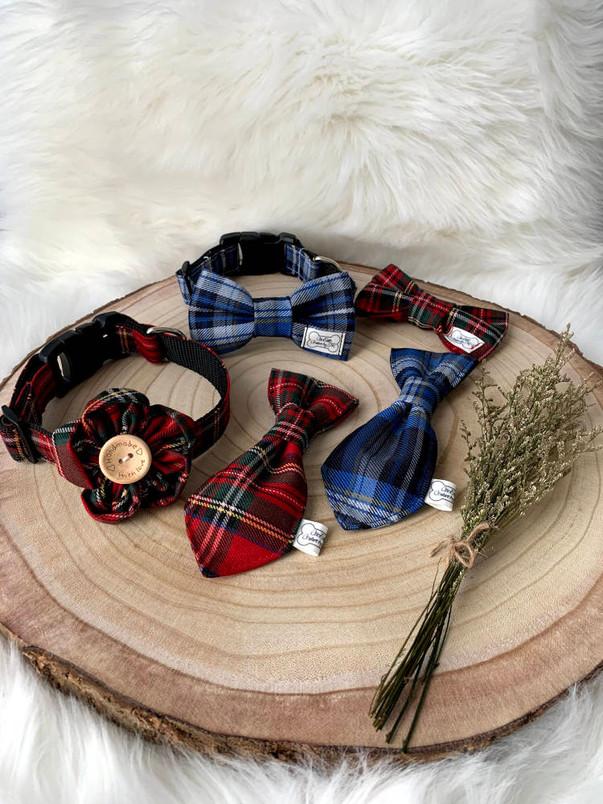 Susan, Sugar & Honey Dog Collar