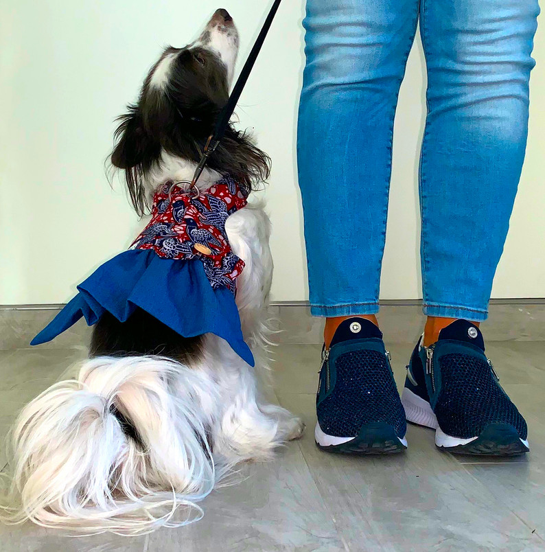 Denim & Ankara Ruffle Harness