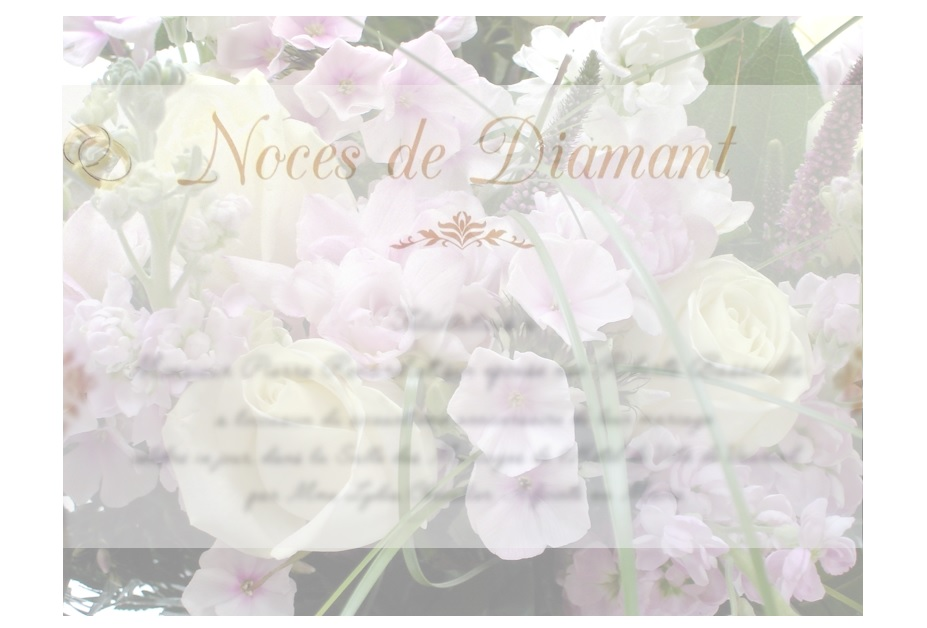 Noces de Diamant ©Les ContempoReines
