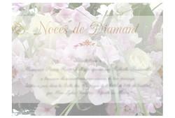 Noces de Diamant ©Les ContempoReines