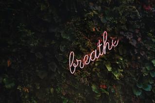 Stress Test - Stress Out
