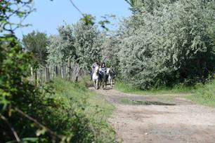 Promenade «Découverte»