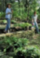 Cheryl replanting.JPG