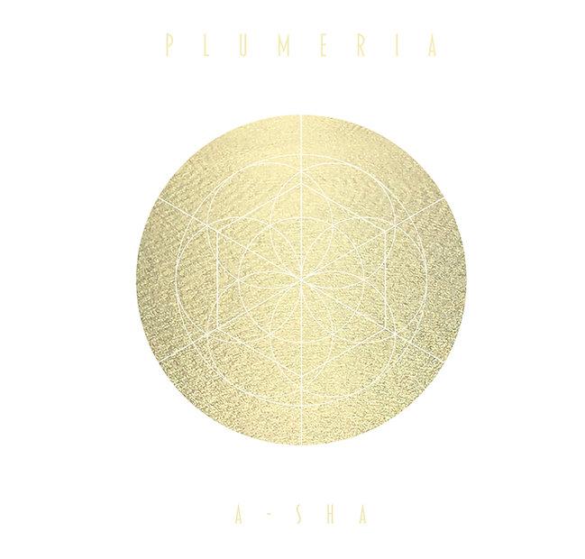 Plumeria_001.jpg