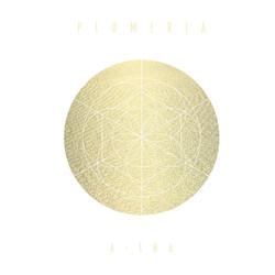 PLUMERIA - A-SHA Mai Yamane