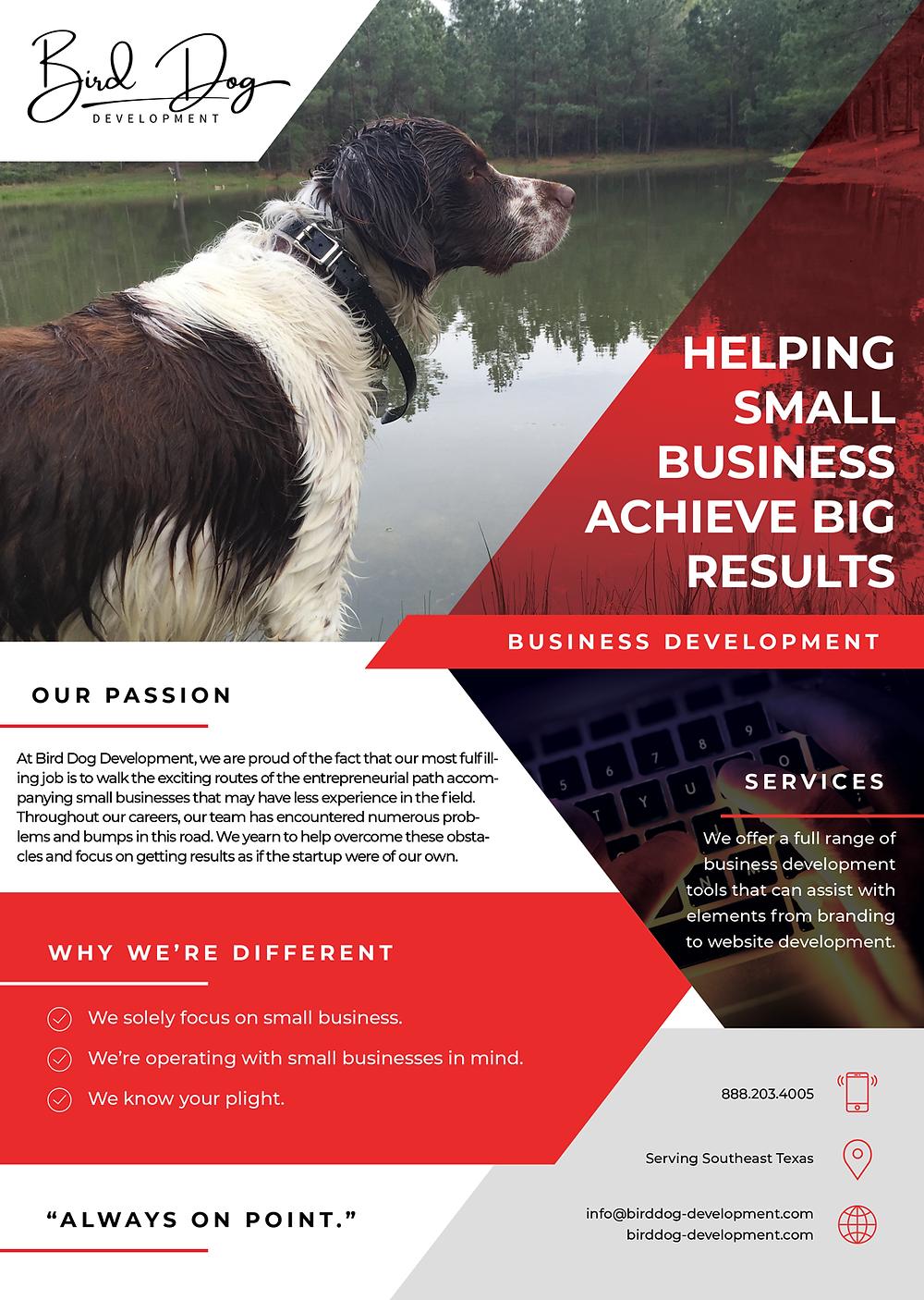 2020 Bird Dog Development Flyer