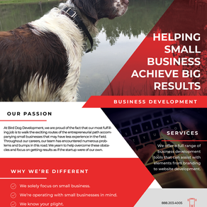 The 2020 Bird Dog Development Flyer