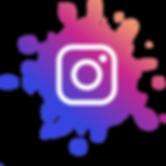 Bird Dog Development - Instagram Page