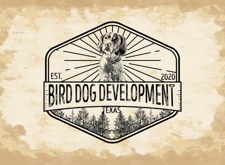 Bird Dog Development | New logo concept
