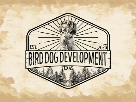 Bird Dog Development | New logo concept