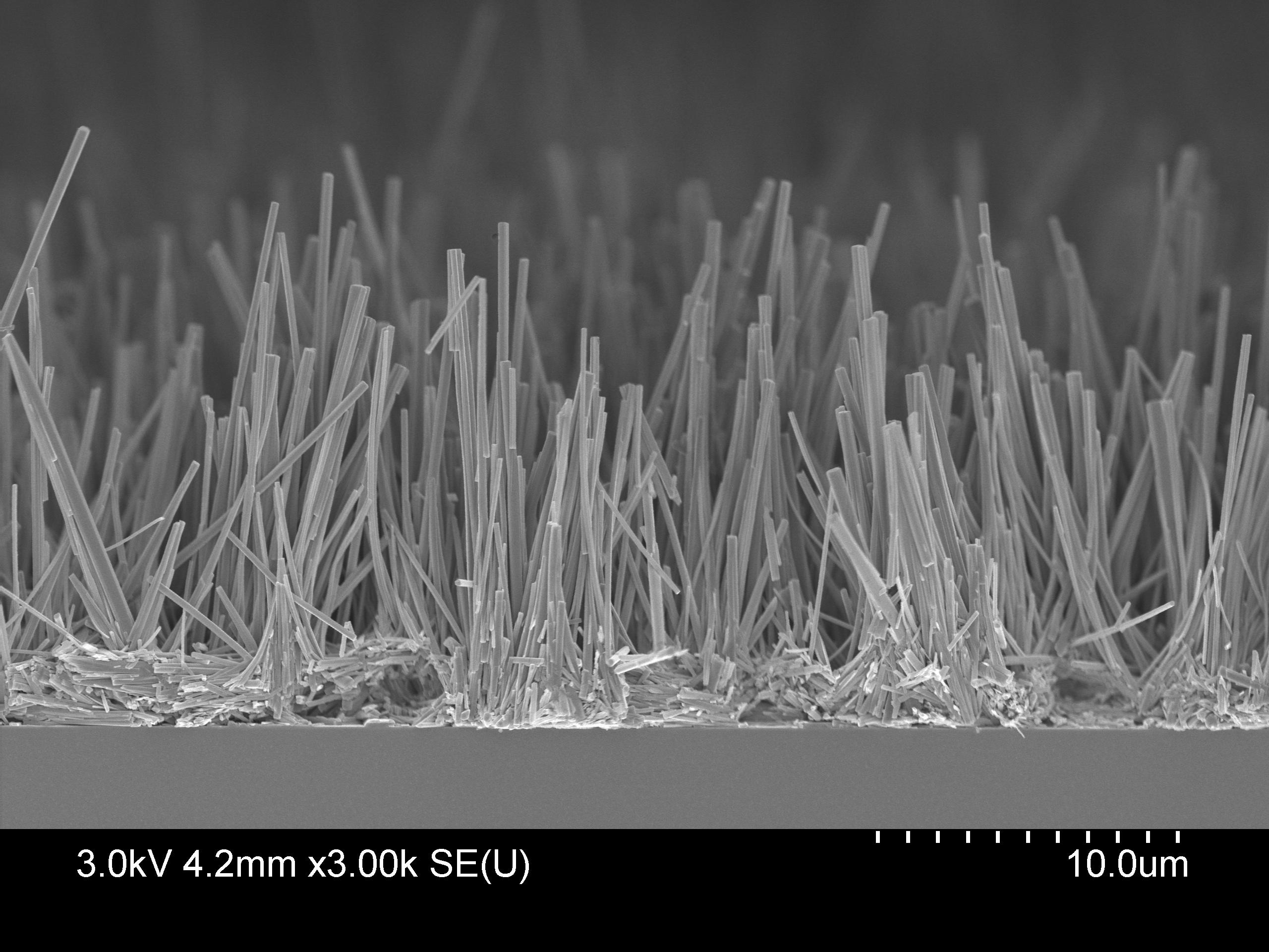 Vertical nanowires