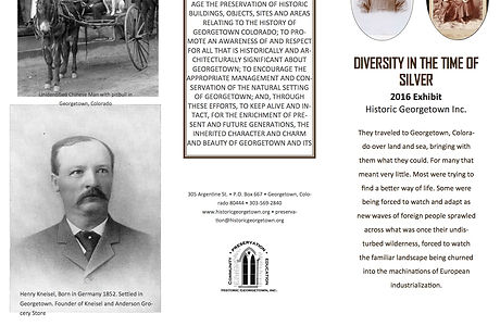 Diversity in the Time of Silver brochure (2 files merged) copy.jpg