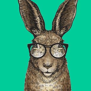 Belgian Rabbit