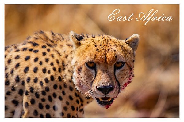 xEast Africa.jpg