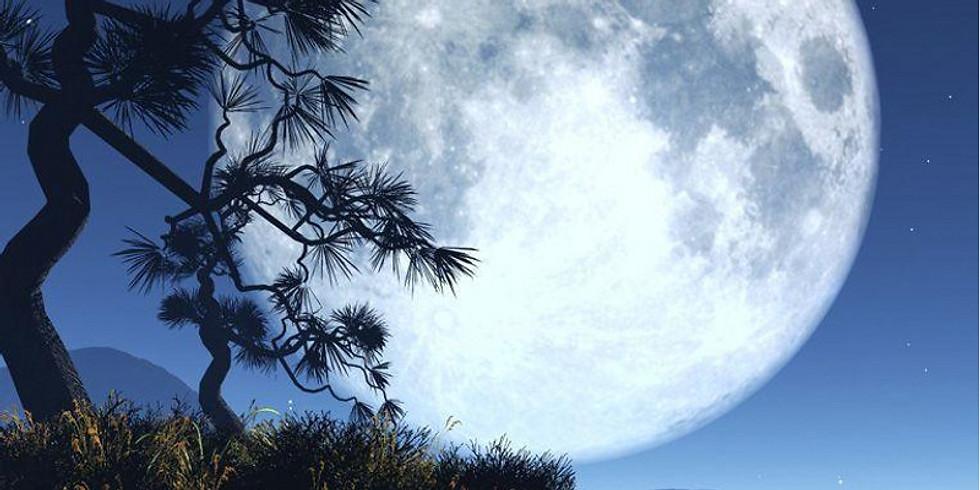 Full Moon Harmony Circle