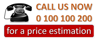 Call us now website.png