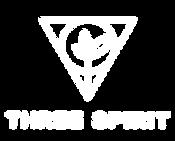 TS_logo_site_black_120x_2x.png
